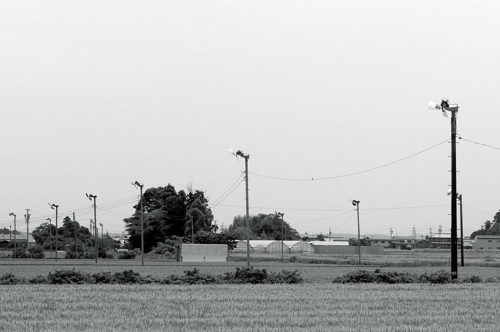greenfan|三重県鈴鹿市