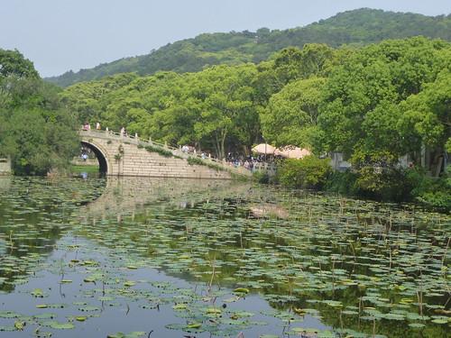 Zhejiang-Putuoshan 5 (55)