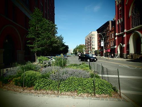 紐約路旁停車空間在減少個人運具後改為城市花圃!攝影:高志文