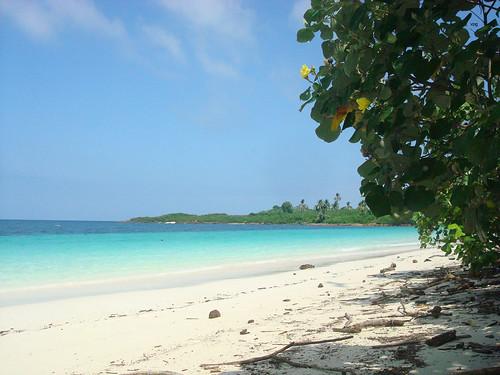 color photo foto tour sony victor arena blanca iguana isla vacaciones panamá vpg islaiguana vitin vpag vipage vpatinog
