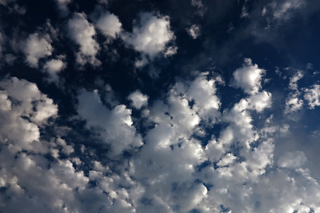 Altocumulus in a dark blue sky