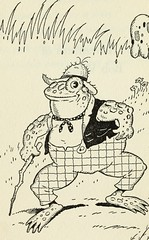 """Image from page 13 of """"The adventures of Bob White"""" (1919)"""