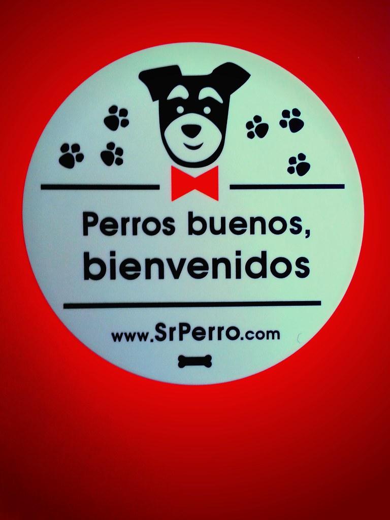 sr_perro_01