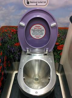 Virgin toilets
