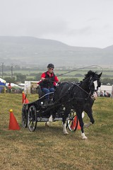 Southern agricultural show 2014 - Sunday (108)