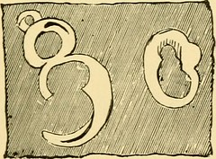 """Image from page 230 of """"Relics of primeval life, beginning of life in the dawn of geological time"""" (1897)"""
