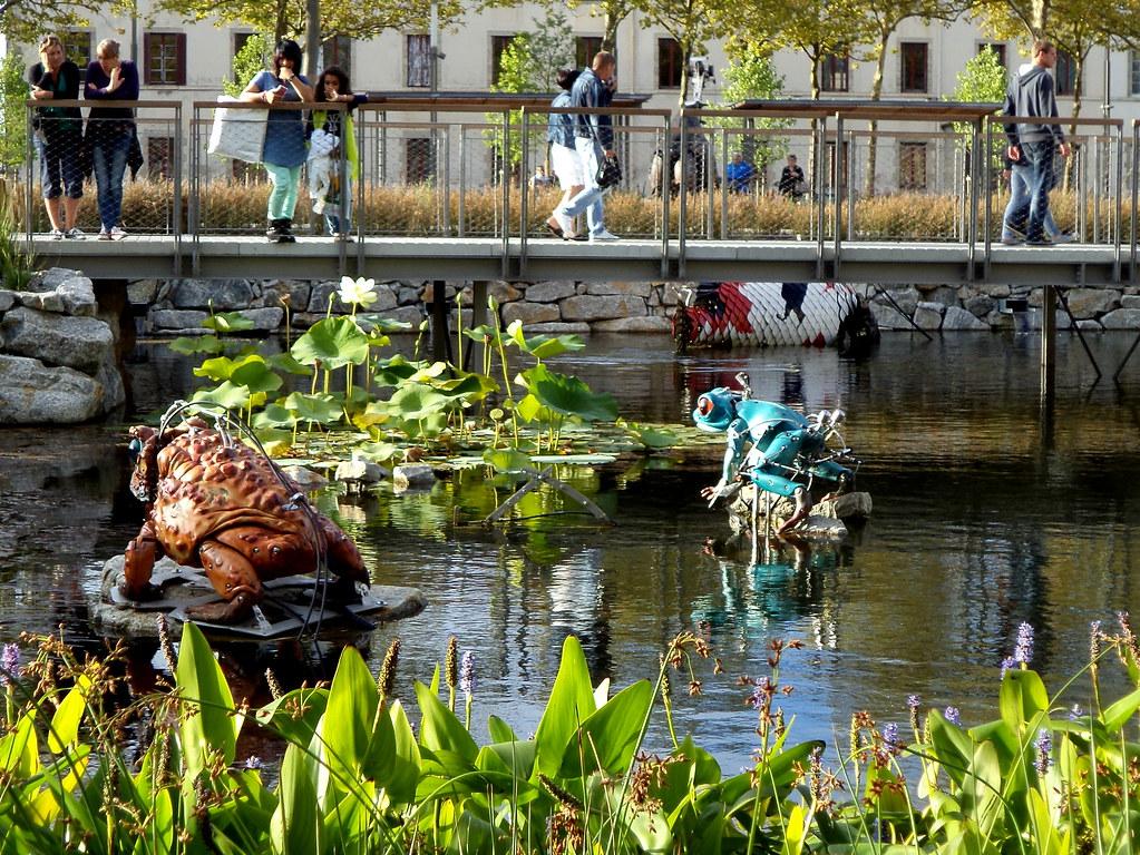 Grenouilles et perche du Nil place Napol\xe9on