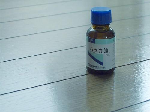 s-DSCF5233