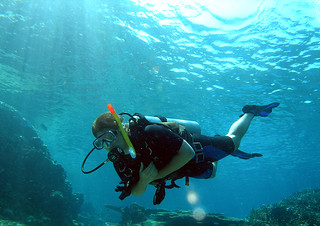 """<img src=""""padi-diving-salang-bay-south-tioman-island-malaysia.jpg"""" alt=""""PADI diving, Salang Bay South, Tioman Island, Malaysia"""" />"""