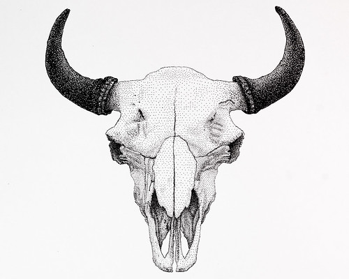 Bison Bison Skull Stippled Ink
