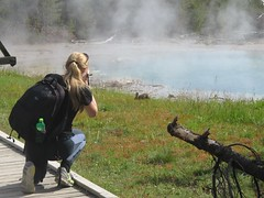 Photographing the rabbit at Yellowstone