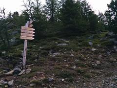 Aufstieg Tarscher Joch - Hasenöhrl
