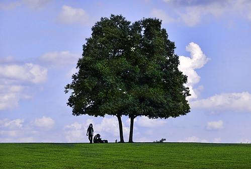 trees sky people green landscape child maryland chesapeake motheranddaughter turkeypoint zunikoff