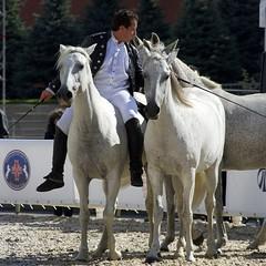 Мы с В. сегодня ходили на  конное шоу Lorenzo Emotion, проходящей на кремлевской площади. Это было потрясающе! #Lorenzo #Лоренцо #всадник #летающийвсадник #лошади #москва #россия #2014 #кск #horse #moscow #russia #осень #сентябрь #Кремль