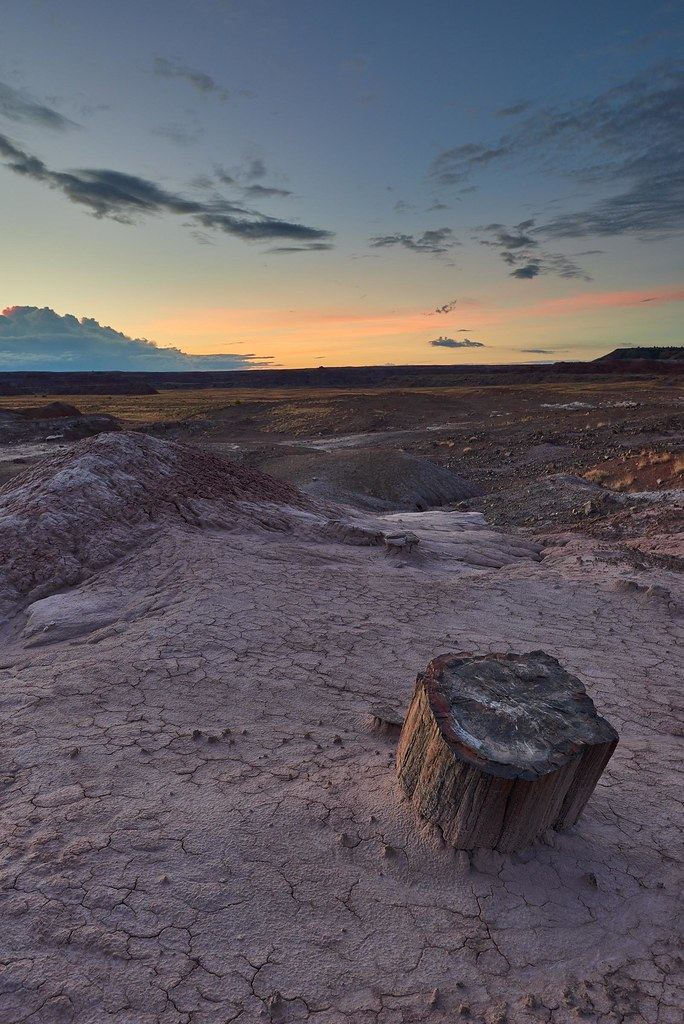 Good Morning - Petrified Forest National Park
