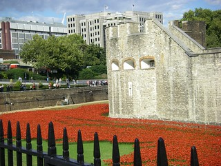 London - Tower with Poppies