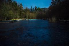 Abandoned Public Swimming Pool °001