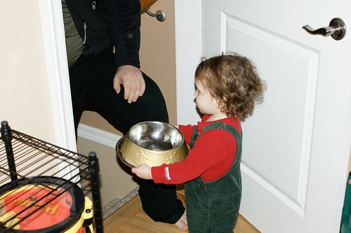 Care of the Family Pet (Photo from The Montessori Child at Home)