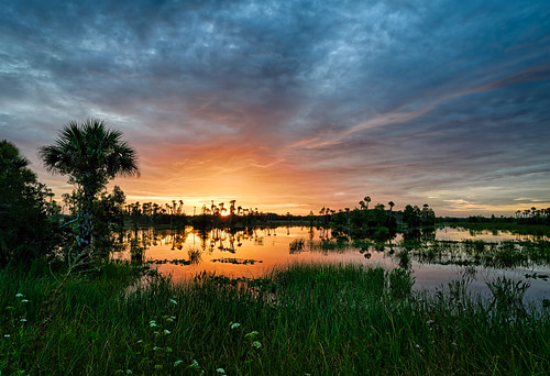 sky usa cloud reflection water sunrise landscape dawn orlando florida cloudy swamp marsh centralflorida orlandowetlandspark edrosack