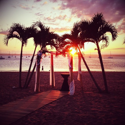 sunset square sand connecticut palmtrees beachwedding iphone mattebox