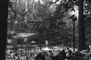 Stern Grove 2014 - Crowd at 930am