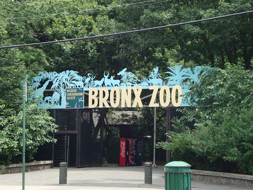 Bronx Zoo, NYC