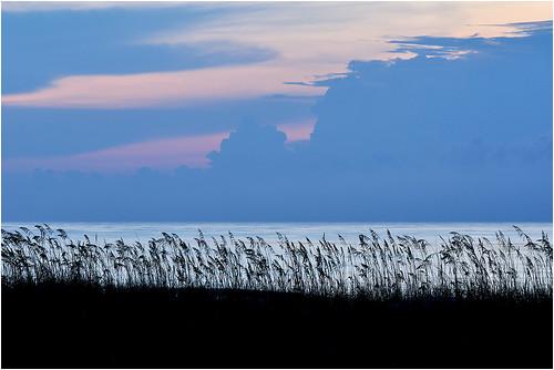 ocean beach coast florida atlantic fernandinabeach ameliaisland