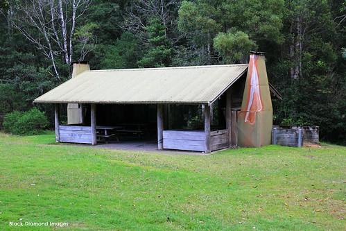Plateau Beech Rest Area Shelter, Werrikimbe National Park, Wauchope, NSW