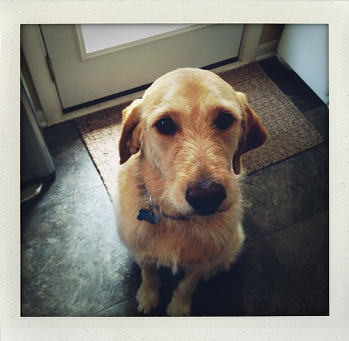 Stanley!!!