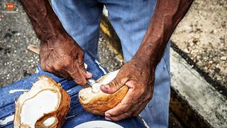 manos... (Río Tempisque - Guanacaste - Costa Rica)