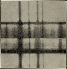 """Image from page 127 of """"Popular science monthly"""" (1913)"""