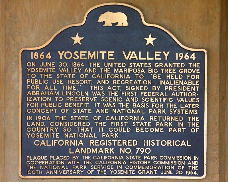 IMG_4198 Yosemite Grant 1864