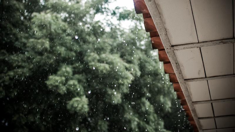 Reminiscent Rain