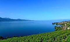 Vert, bleu lac, bleu ciel....