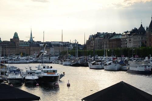 Sverige 2014 - NIK_7483