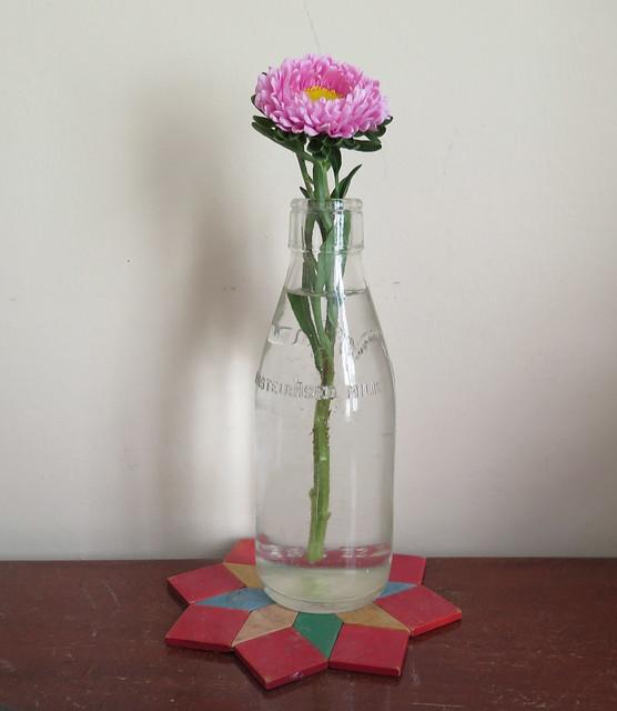 Flower In Milk Bottle