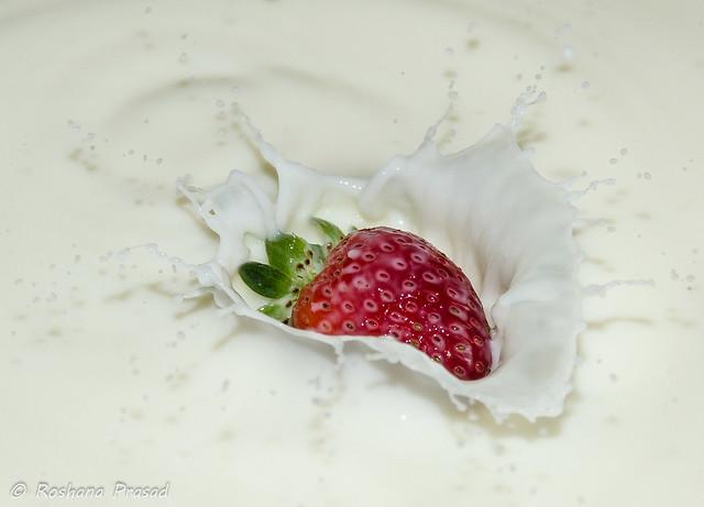 Milky berry