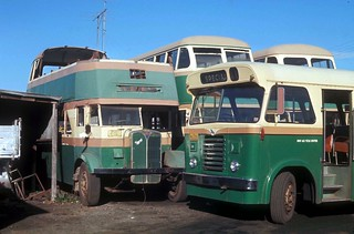 John J. Hills of Wollongong unregistered AEC Regent (ex Department of Road Transport and Tramways No 1671) in cut down form and Leyland Comet 6306 in the depot yard, Glebe Street, Wollongong, N.S.W. Australia.