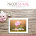 ProofShare, now available in iTunes!