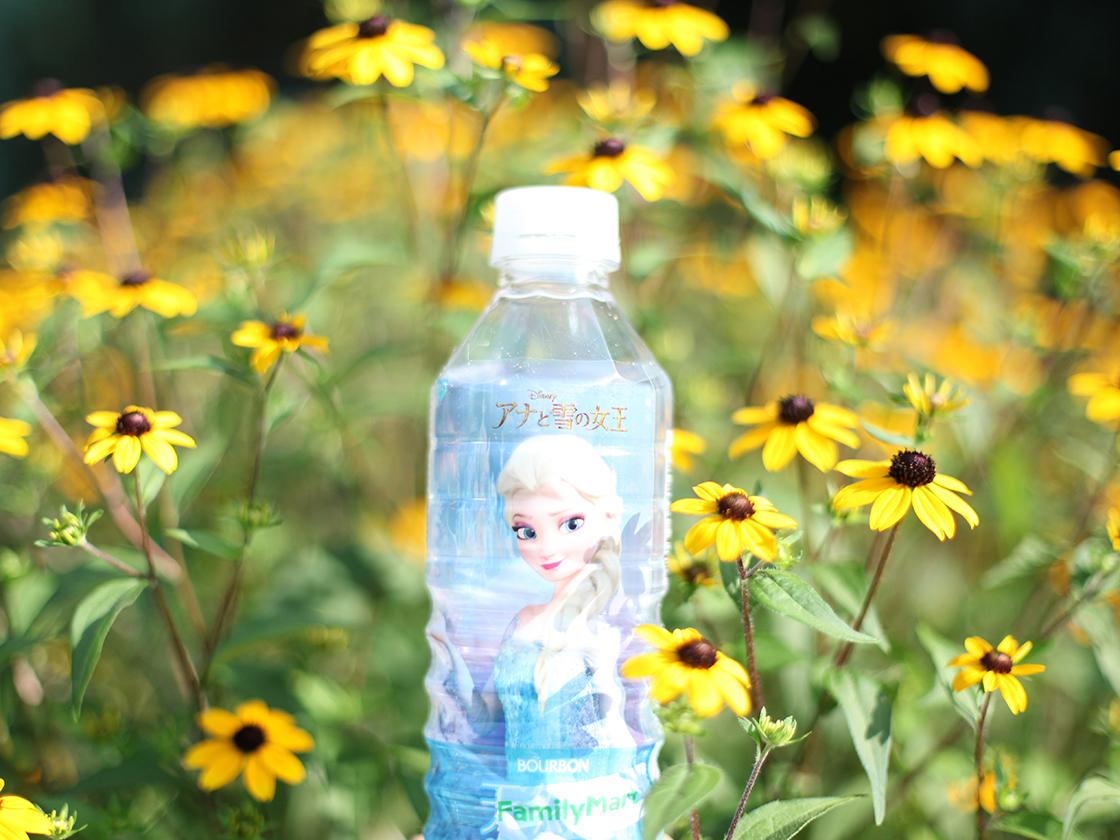 elsa water
