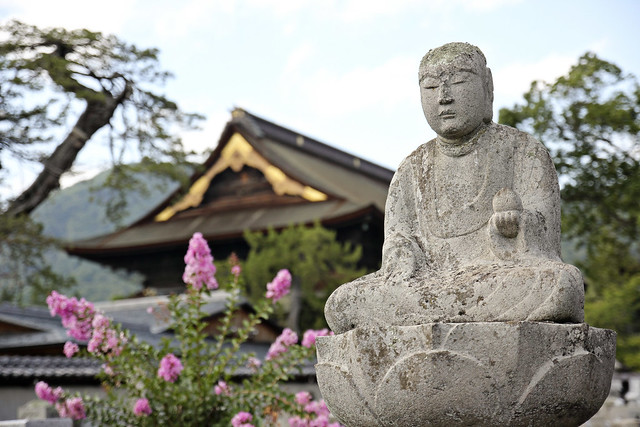 buddha with zenko-ji in the background