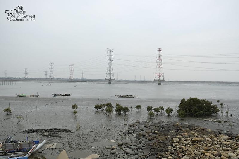 麗水漁港 (3)