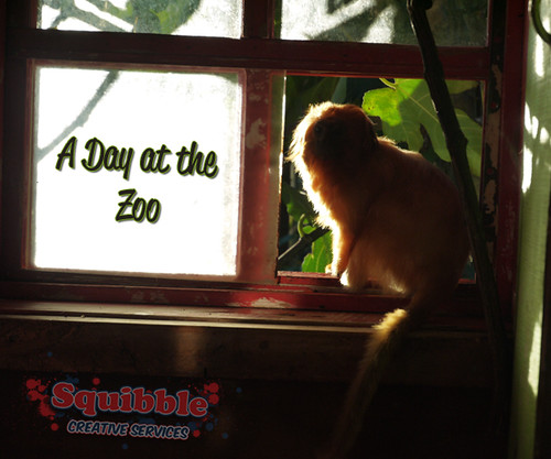 Squibble's Day At the Zoo - June 2014
