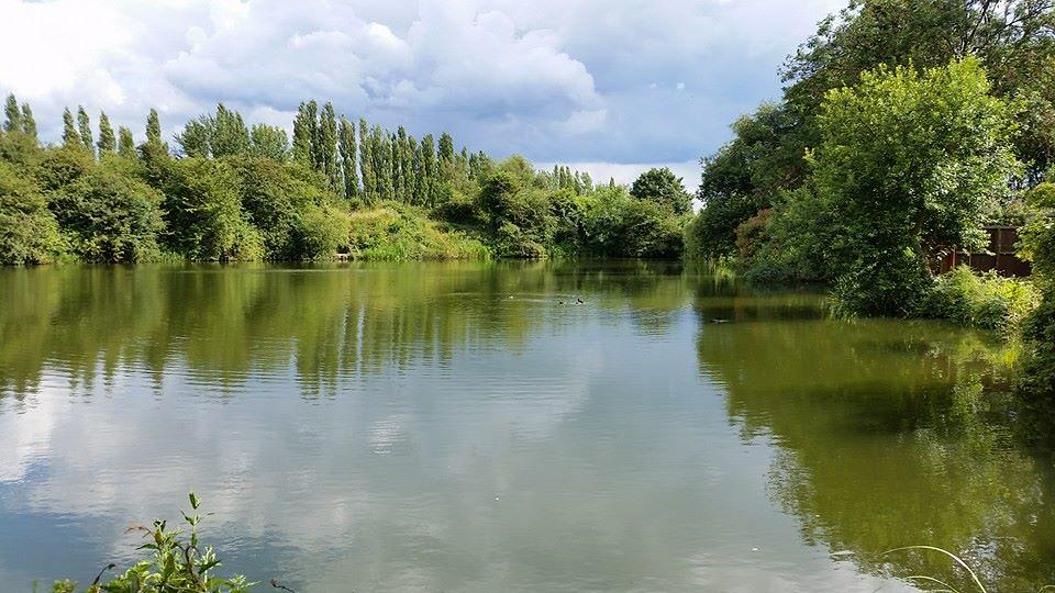 Grove Pool