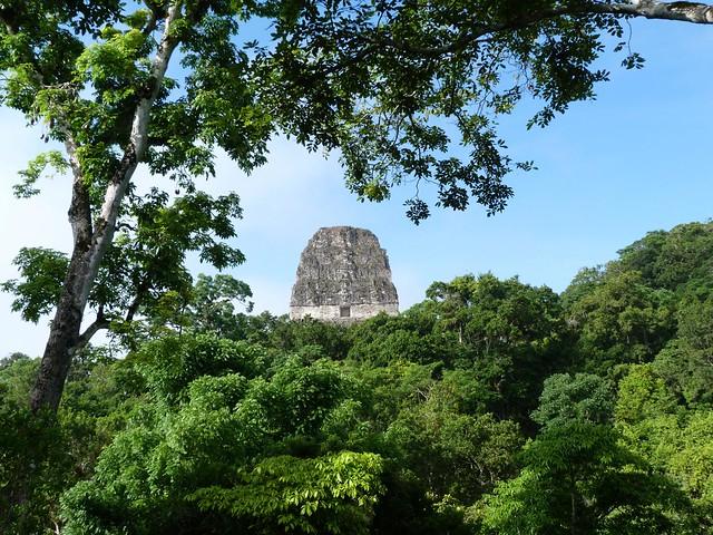 Templo V de Tikal (Guatemala) visto desde la Acrópolis central