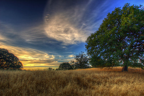 sunset sky tree clouds landscape oak hdr mountwanda cityofmartinez