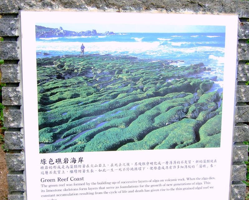 綠色礁岩海岸