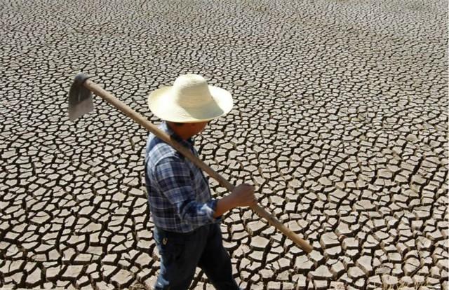 1_calentamiento global diarioecologia.jpg