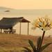 Remote Lake Tanganyika