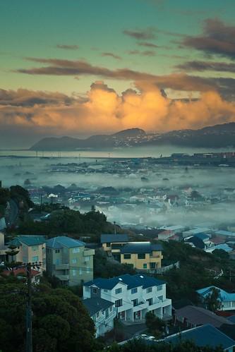 newzealand fog clouds plane sunrise airport wellington miramar airnewzealand